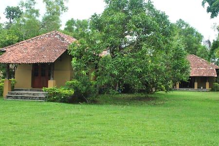Villa 44 (Ruskin Island) - Panadura - Vila