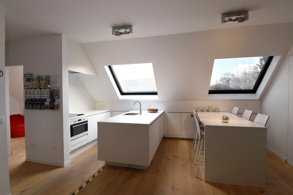 Spacious kitchen with oven - microwave combi, refrigerator with small freezer, dishwasher, ceramic cooker and hood