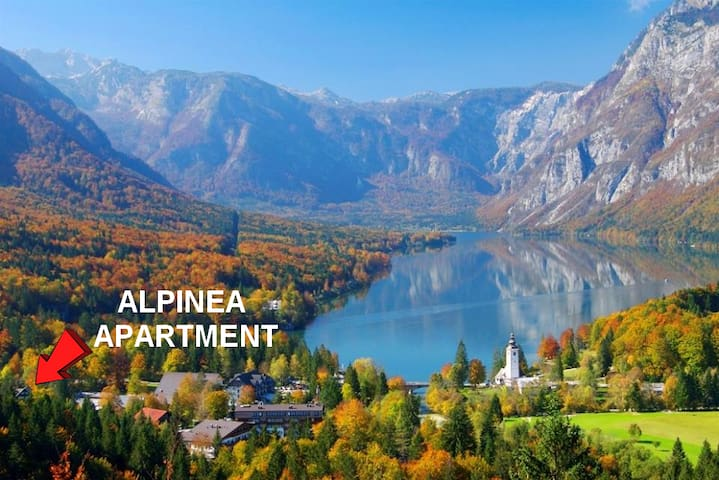 Location of the Alpinea apartment