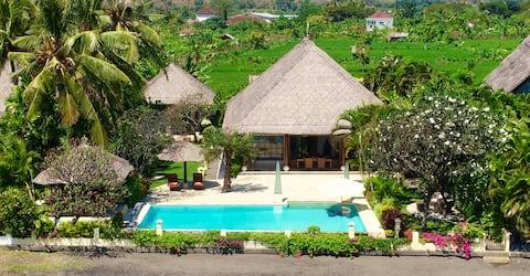 Villa Surgawi Lovina , North Bali