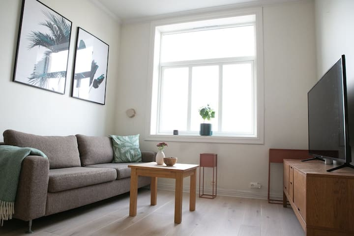 Two bedroom apartment central in Oslo