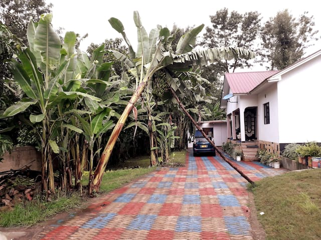 Meru Farm House