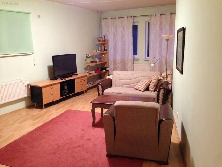 Big one- room studio apartment ( 43m2)