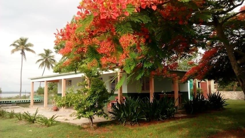 Villa D'Lirios Habitación 1