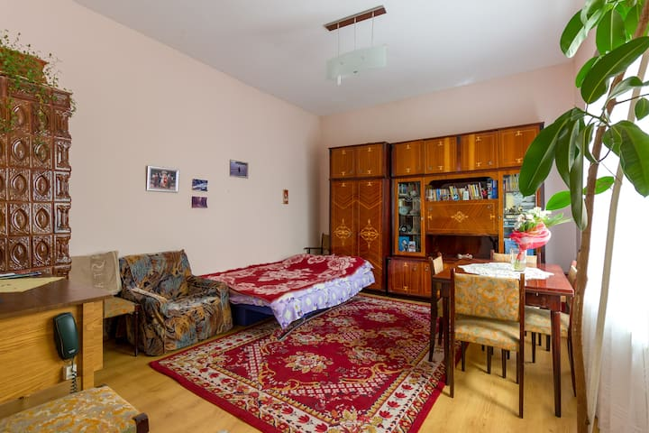 Private room in my parents house! - Cluj-Napoca - Hus