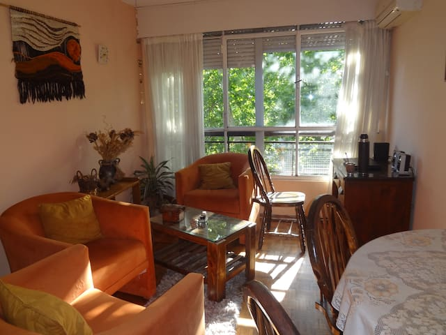 Cozy apartment in excellent location