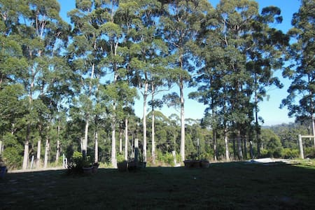 Blue Moon Forest Lodge (Manjimup)