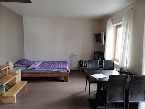 Gemütliches 1-Zimmer Appartment mit Südbalkon