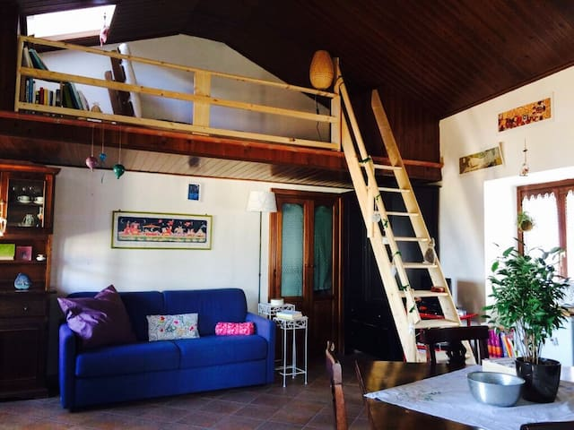 Lovely loft with view in the heart of Tolfa