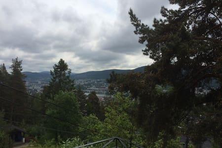 Drammen with a view - Drammen
