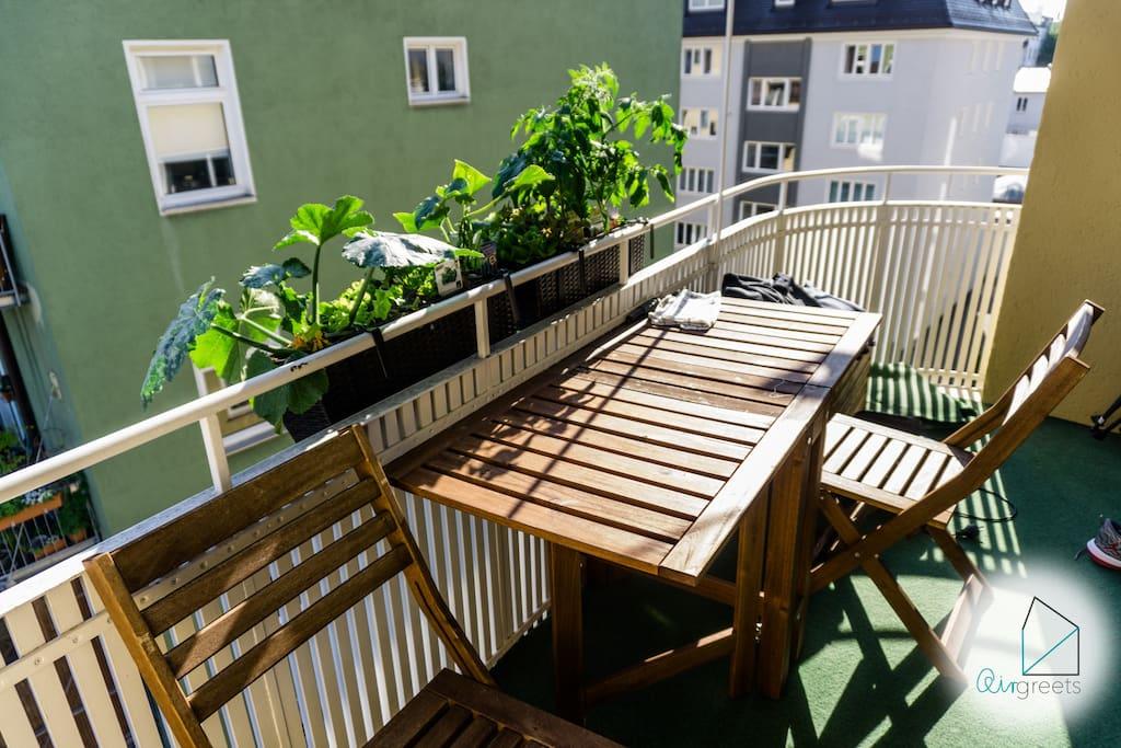 Enjoy the sun on our balcony.