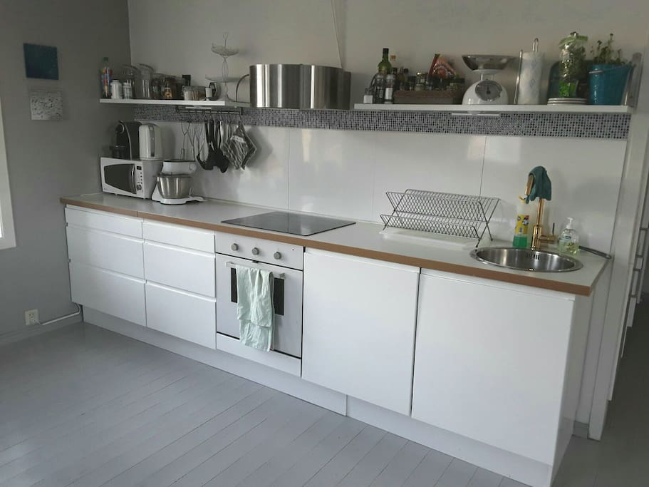 Fully equipped kitchen with inbuilt dishwasher by the oven and induction cooker.