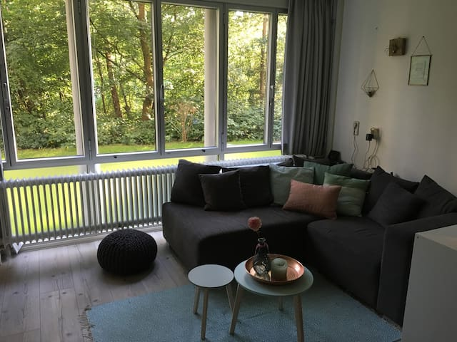 Complete Apartment in park in Amsterdam-North - Amsterdam - Byt