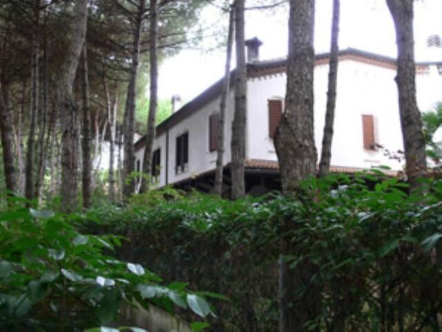 Una grande casa verde: sport, relax