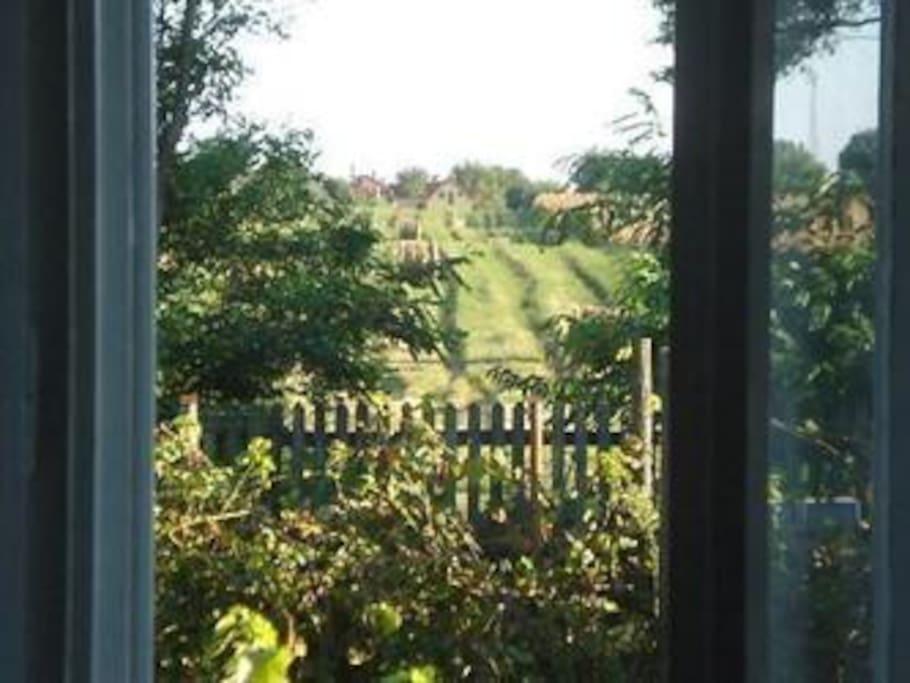 uitzicht vanuit de woonkamer/view from the livingroom
