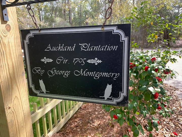 Auckland Plantation Room 1