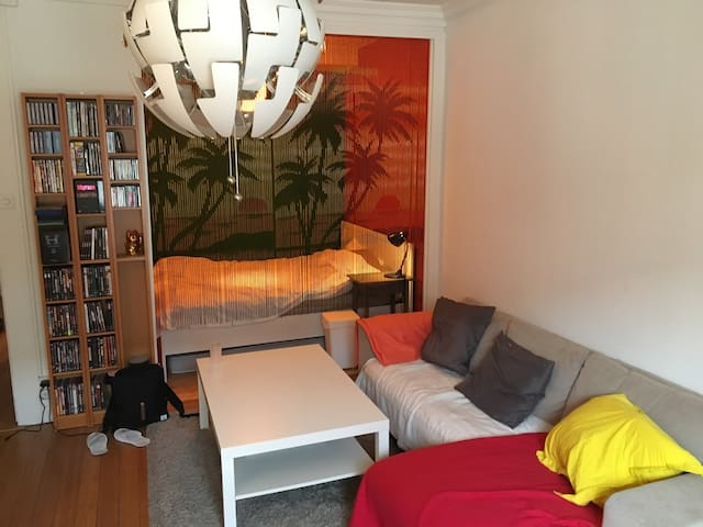 Beautiful appartment in the city center - Genève - Appartement