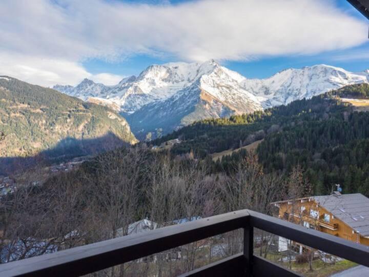 Appartement typique vue Mont Blanc piscine tennis