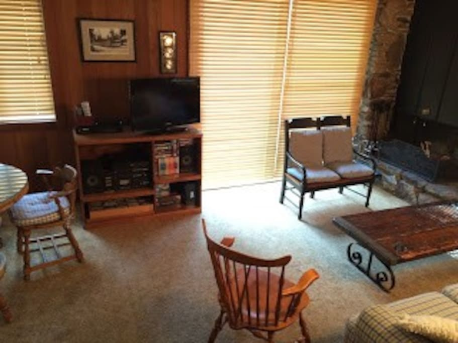 Flat screen television with basic cable and entertainment center that can handle all media, including vinyl.