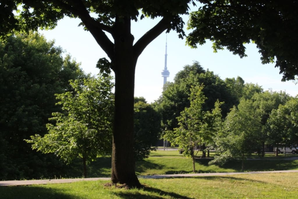 View From the House - Park Across the Street