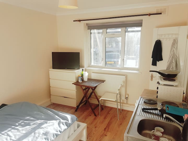 Big bright double studio, free parking, Wi-Fi, N2