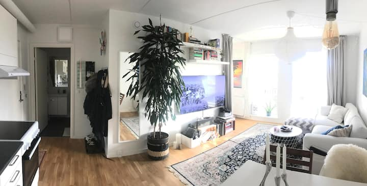 Sunny and artistic 2 room apartment, built 2019