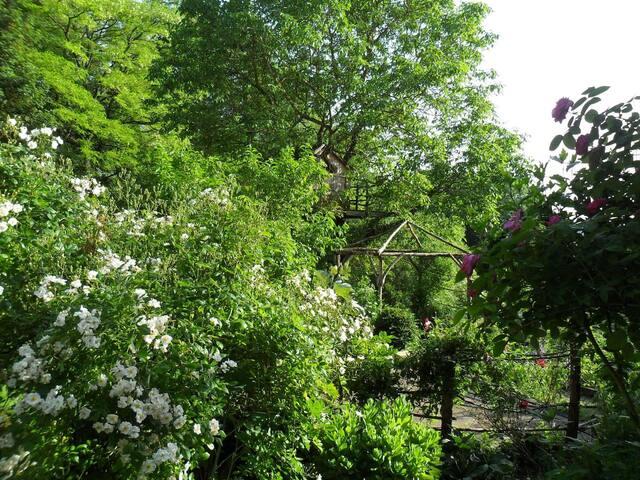 Maison entre monts & vignes - chambre verte