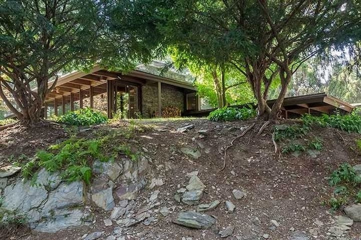 Mid Century Retreat on 8 acres - Lagrangeville - Dom
