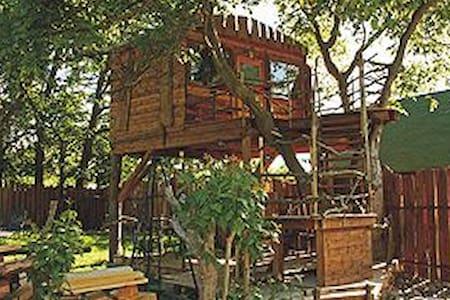 Einzigartiges Baumhaus am Malchiner See