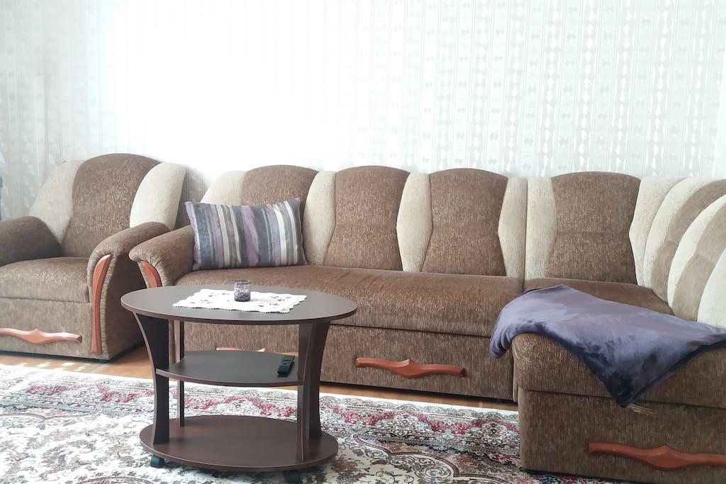 Гостиная зона. Диван-кровать Living room, Bedroom 1