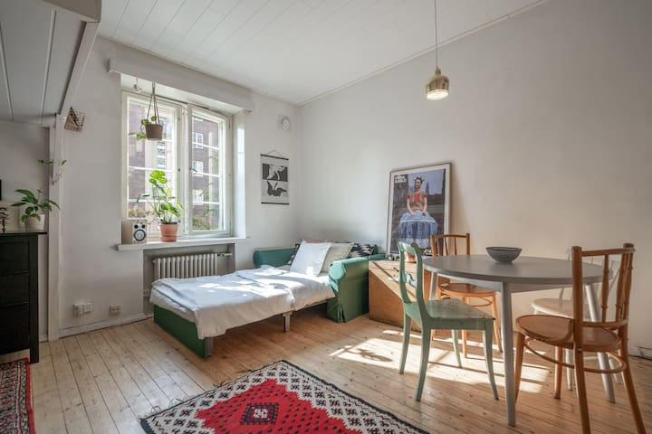 Cozy studio in the heart of Kallio district