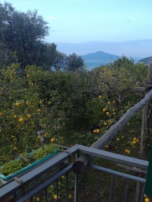 Panorama sul Vesuvio