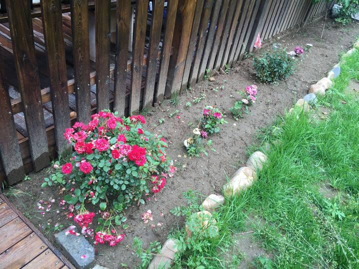 自在小屋 宗裕城 42平温泉 花园房