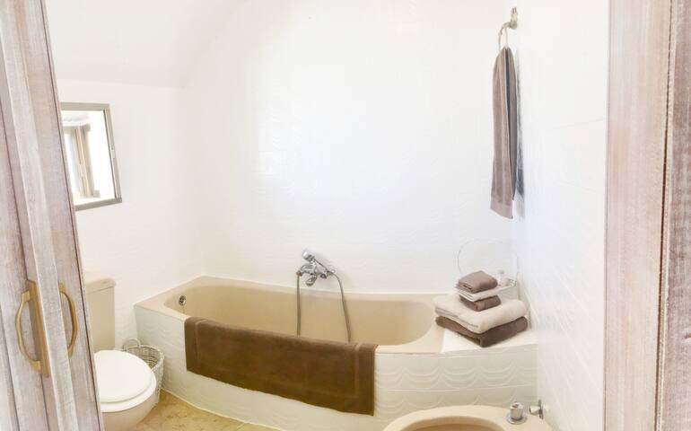 Salle de bain avec grande baignoire offrant un luminaire avec variateur de couleur et d'intensité. Il peut se connecter par blue tooth à votre téléphone pour écouter la musique de votre choix pendant vos moments d'intimité...