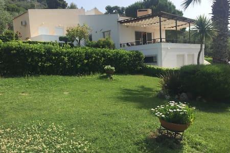 Βίλα στον Θεολόγο με μεγάλο κήπο και BBQ - Fthiotida - Villa