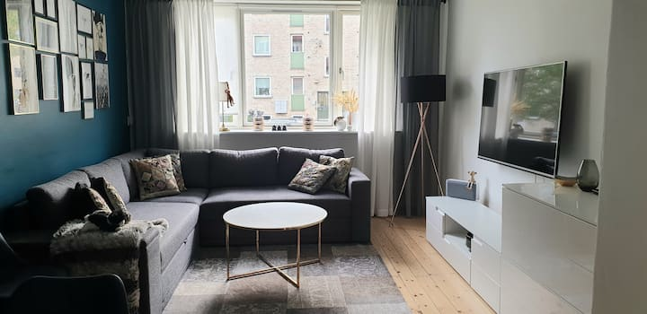 Cosy Apartment Close to Everything - with Netflix