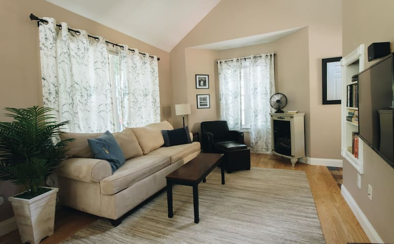 Living space, sofa faces large screen TV with cable and DVD player