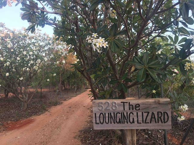 Relax at The Lounging Lizard ( Blue Tongue Room)