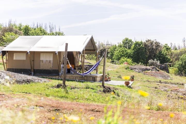 Quinta dos Corgos - Safari tent Azul
