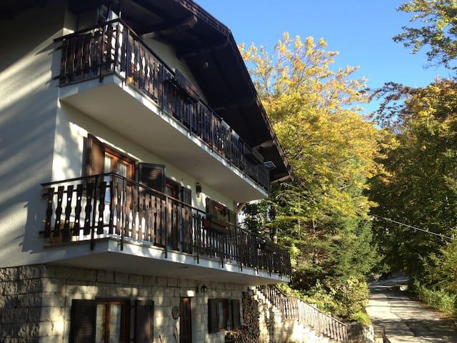 Lagolo - relax e tranquillità - Lagolo - Appartement