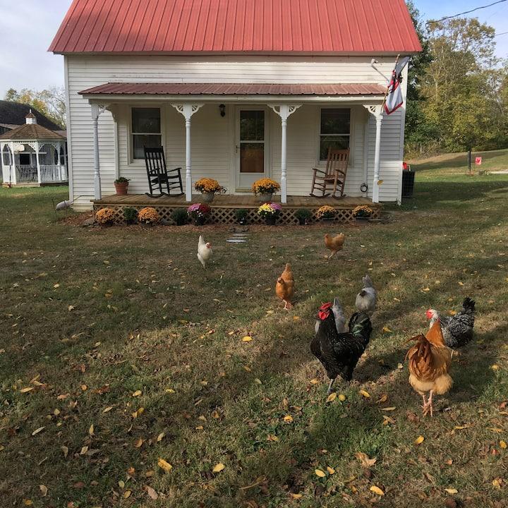 Stoner View Farm
