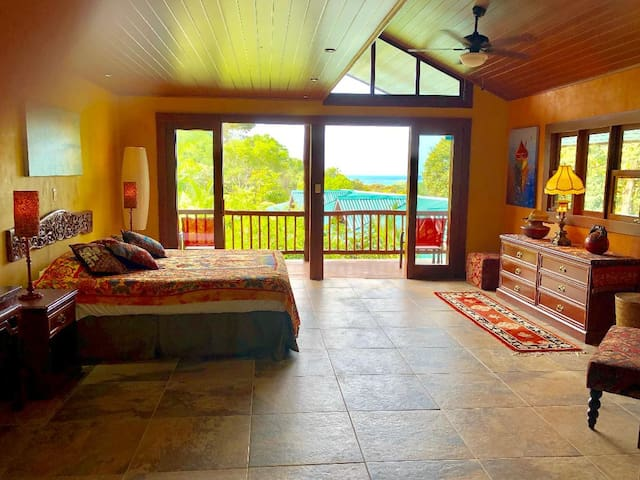This large ocean view master suite (16' x 24') includes a king size bed and two private balconies.