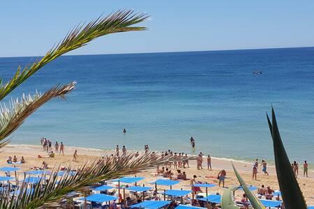 Junto à praia, bom para descansar e passear - Armação de Pêra - Διαμέρισμα