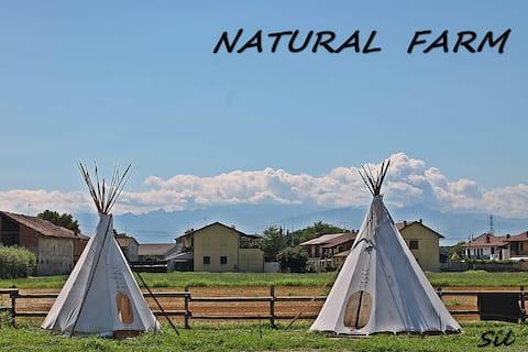 Indian Village (Natural Farm Tepee)