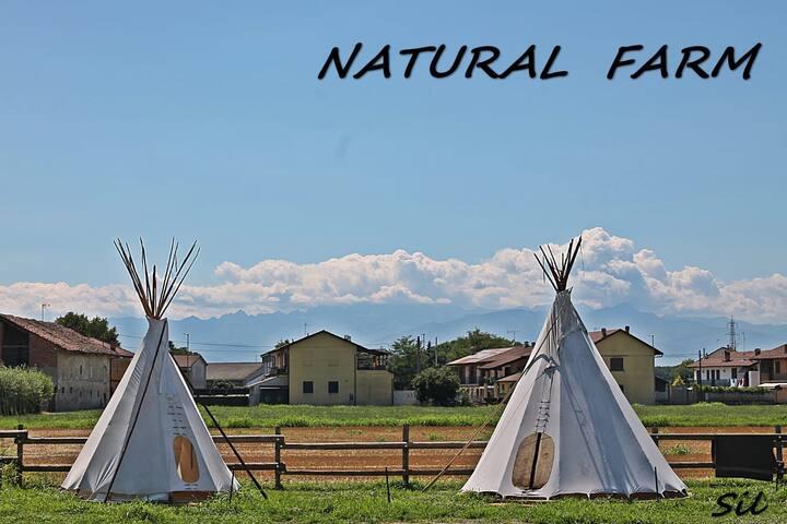 Villaggio Indiano (Natural Farm Tepee)