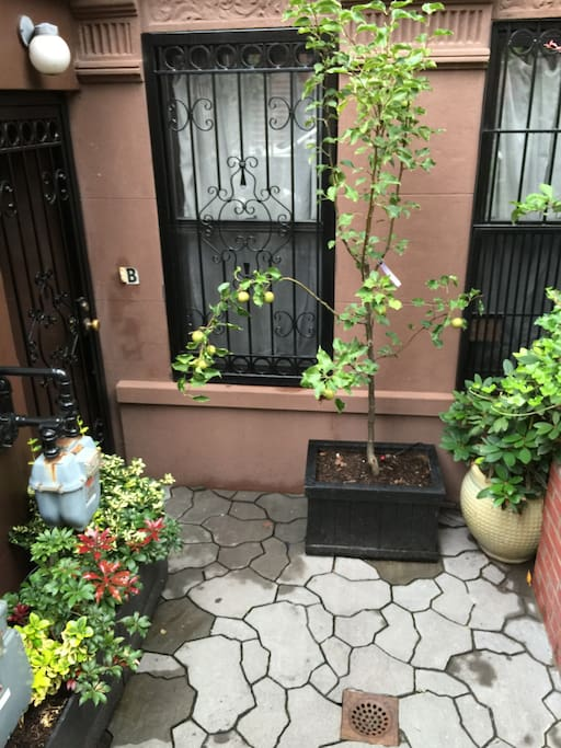 View of private entrance to garden-level rental apartment.
