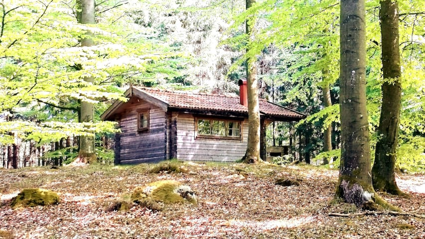 Boket cottage forest natural recreation silen