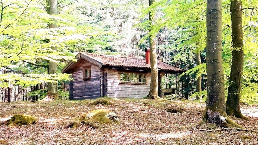 Boket cottage forest natural recreation silen