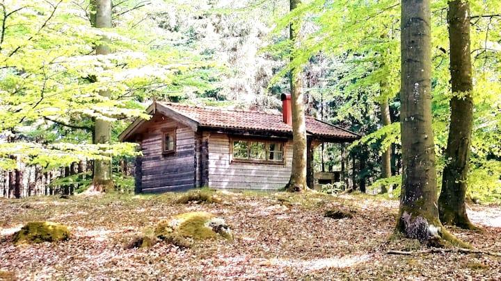 BoketHütte Wald natürliche Stille Erho