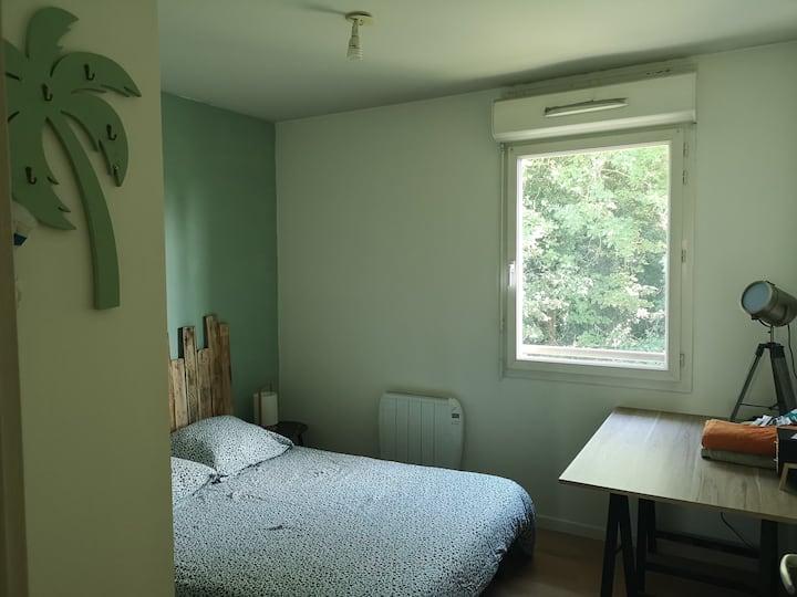 Chambre proche place St Marc/CHU